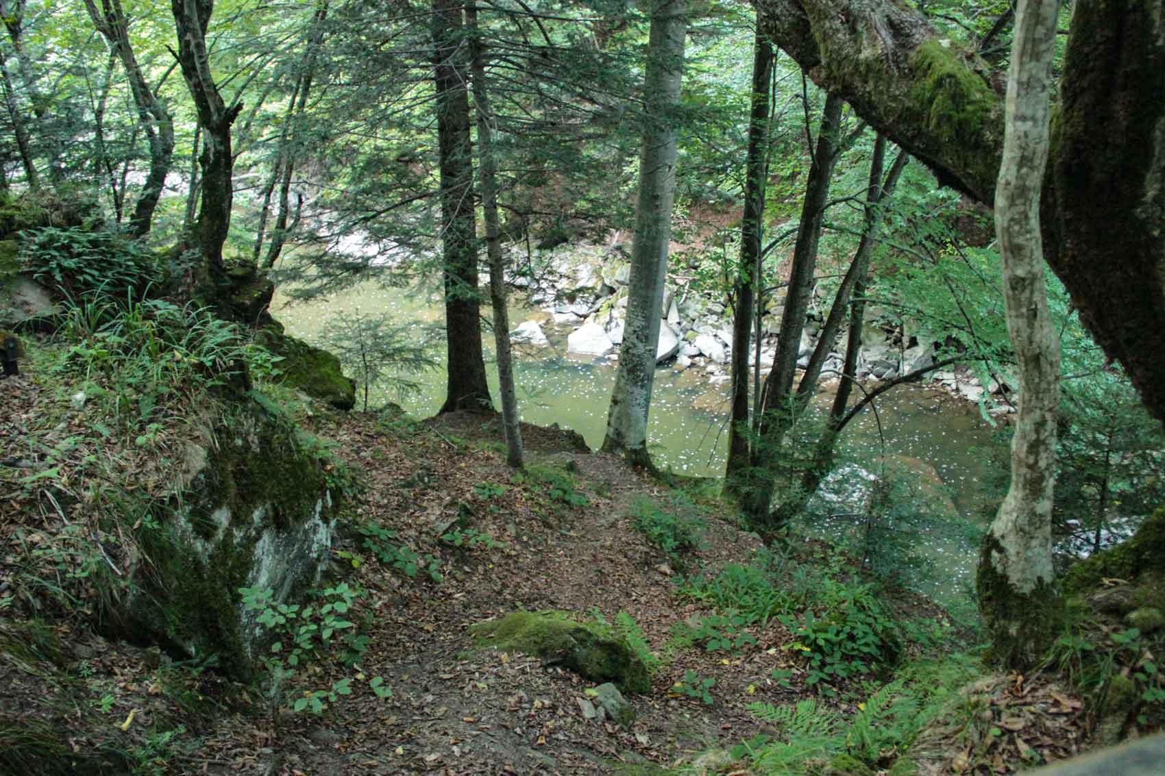 Rezerwat Przełomy